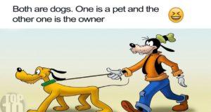 Hilarious Cartoon Logic Moments! 4