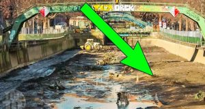 The CRAZIEST Discoveries Found in Drained Waters 2