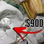 Top 10 Lucky Finds That Made People Rich 9