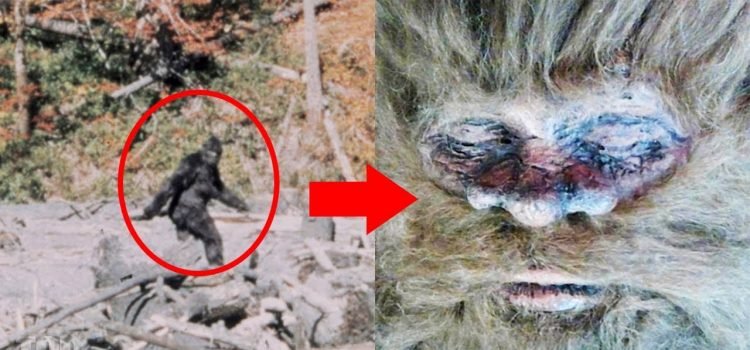 10 SCARY Creatures, Finally Caught! 1